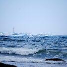 Newport Sailing by Sunshinesmile83