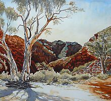 Barraranna Gorge, Arkaroola, Flinders ranges by Virginia  Coghill