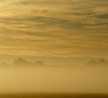 golden dawn above the mist by metriognome