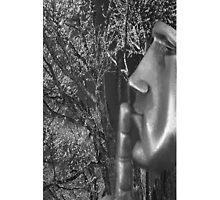 ☀ ツShh!! FACE IN THE SILENCE OF NATURE IPHONE CASE ☀ ツ by ╰⊰✿ℒᵒᶹᵉ Bonita✿⊱╮ Lalonde✿⊱╮