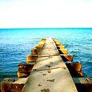 Lake Michigan by S. Raja