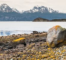 Lake and yellow rocks by Fausto Soares Capellari