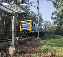 Train on Hurstbridge Diamond Creek track 201306195292 by Fred Mitchell