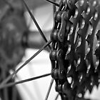 Spokes  by Stephen Knowles