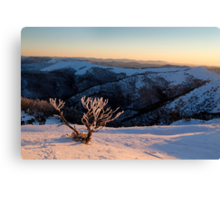 Sunset on the mountainside Canvas Print