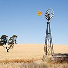 Wind driven water pump South Australia by jwwallace
