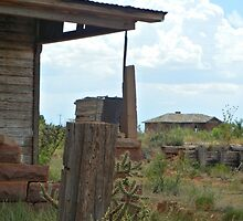 Neighborly View--Ruined Ranch House, Cuervo, New Mexico by CandyApplCrafts
