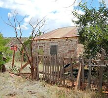 Good Fences --Ruined House, Cuervo, New Mexico by CandyApplCrafts