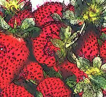 Strawberries  by OlaG