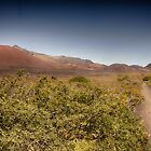 Haleakala #2 by NealStudios