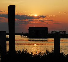 Smith Island Sunset 1 by Phyllis Dixon
