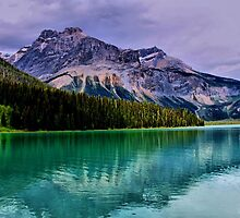 Emerald Lake, British Columbia by Vickie Emms