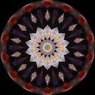 Flower by Jan  Tribe