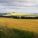 Windmill Hill by Caroline Anderson