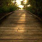 Boardwalk 5 by Michael Damanski