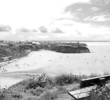 bench in summer with view of ballybunion town by morrbyte