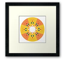 Cat Kaleidoscope Framed Print
