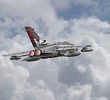 RAF Tornado - 617 Squadron by Pat Speirs