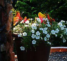 Pot of Petunias by Eileen McVey