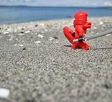 Ninja lifeguard by bricksailboat
