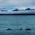 Chilkat Range Pan by Yukondick