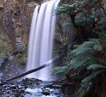 Hopetoun Falls, Otaway National Park by Wozzle