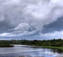 Stormy Sky by Carol Bailey White