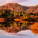 Reflections by Greg Summers
