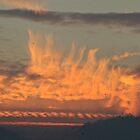 Fiery Sky by dilouise