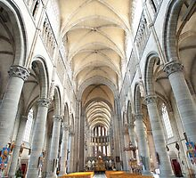 St Martin's Cathedral - interior by Peter Reid