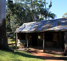 Slab Cottage And Gum Tree by Noel Elliot