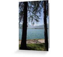 Zell Am See: Lake Through Trees Greeting Card