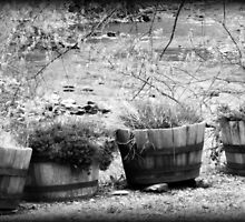 Black and White Barrels rustic barrel planters by jemvistaprint