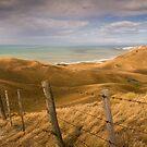 Coastal Farm - NZ by Lachlan Kent