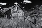 Old Shed V - B&W by PhotosByHealy