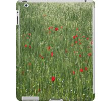 Poppy Field And Springtime Hay Meadow iPad Case/Skin