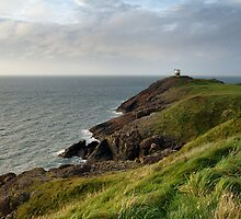 Clifftop by Ian Leyland