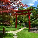 Japanese Garden by Debbie  Maglothin