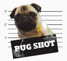Pug Shot by Zero887