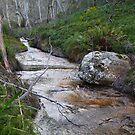 Braeside Creek 1 by Geoff Smith
