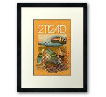 2112AD Framed Print