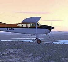 Cessna 185F Bush Plane by Walter Colvin