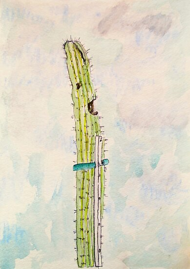 singing cactus by donnamalone