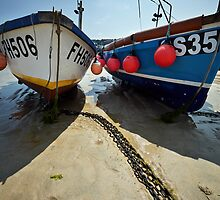 Sea Buddies by Andy Freer