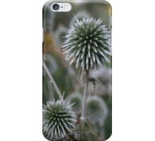 Macro Seed Head of Round Headed Garlic iPhone Case/Skin