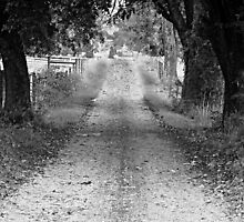 Country Road black and white backroad photography by jemvistaprint