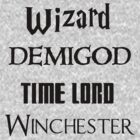 Fandoms: Wizard, Demigod, Time Lord, Winchester by Fiona Boyle