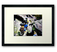 Pirate road-trip hike Framed Print