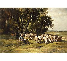 A shepherd and his flock Photographic Print