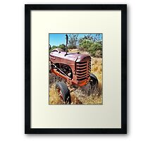 Are You Gonna Leave Me Here? Framed Print